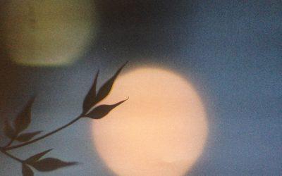 Soleil, Feu, et Energie du coeur